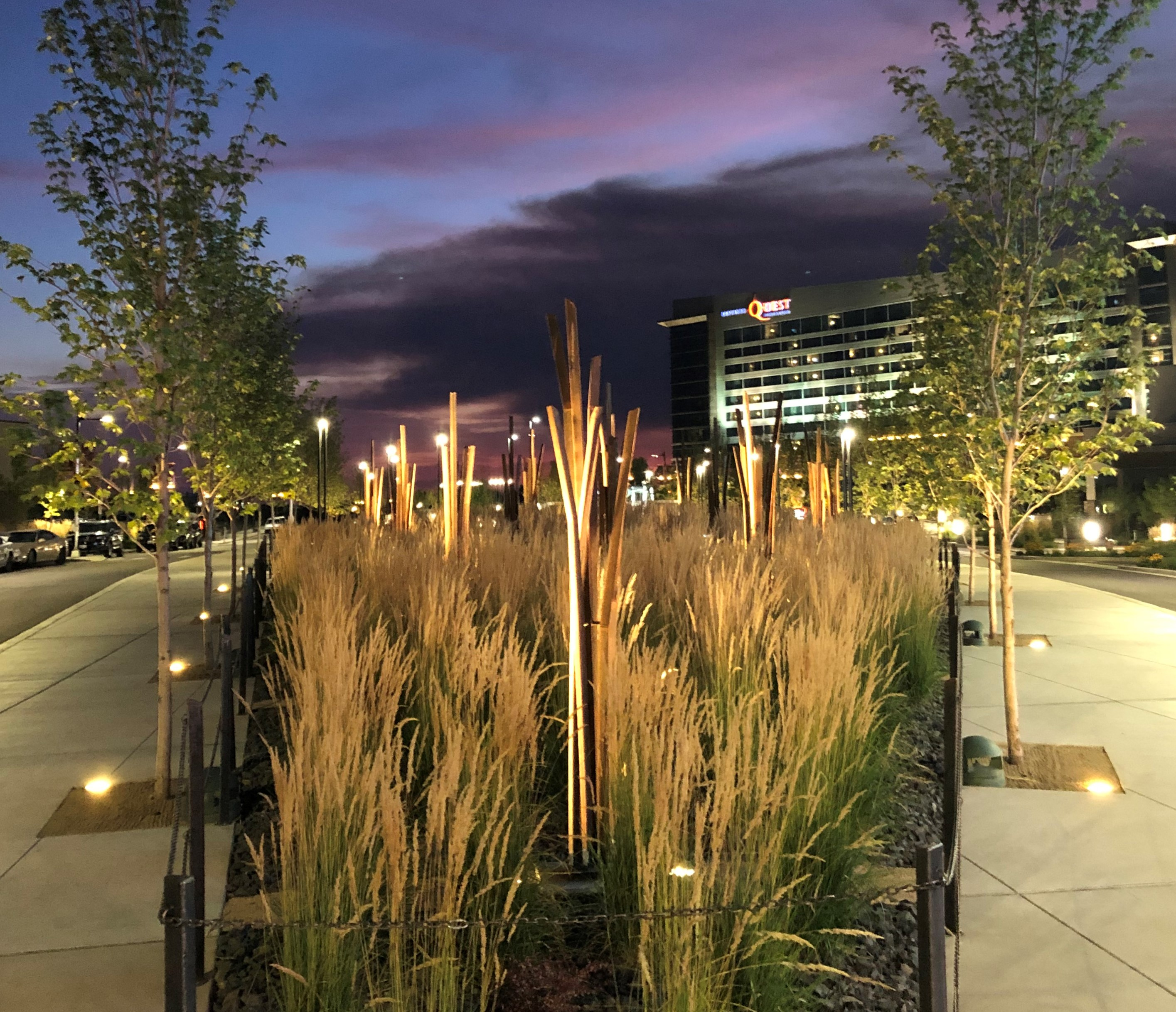 Tule Reeds feature at sunset in front of the Northern Quest casino.